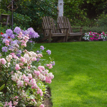 popular landscaping projects